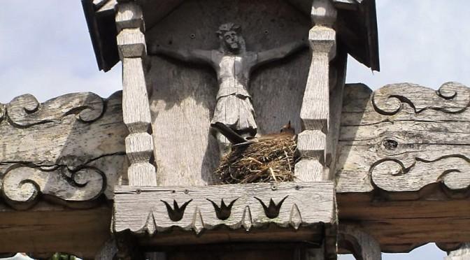 oiseau dans son nid à l'ombre du Christ pour le 17e dimanche ordinaire C